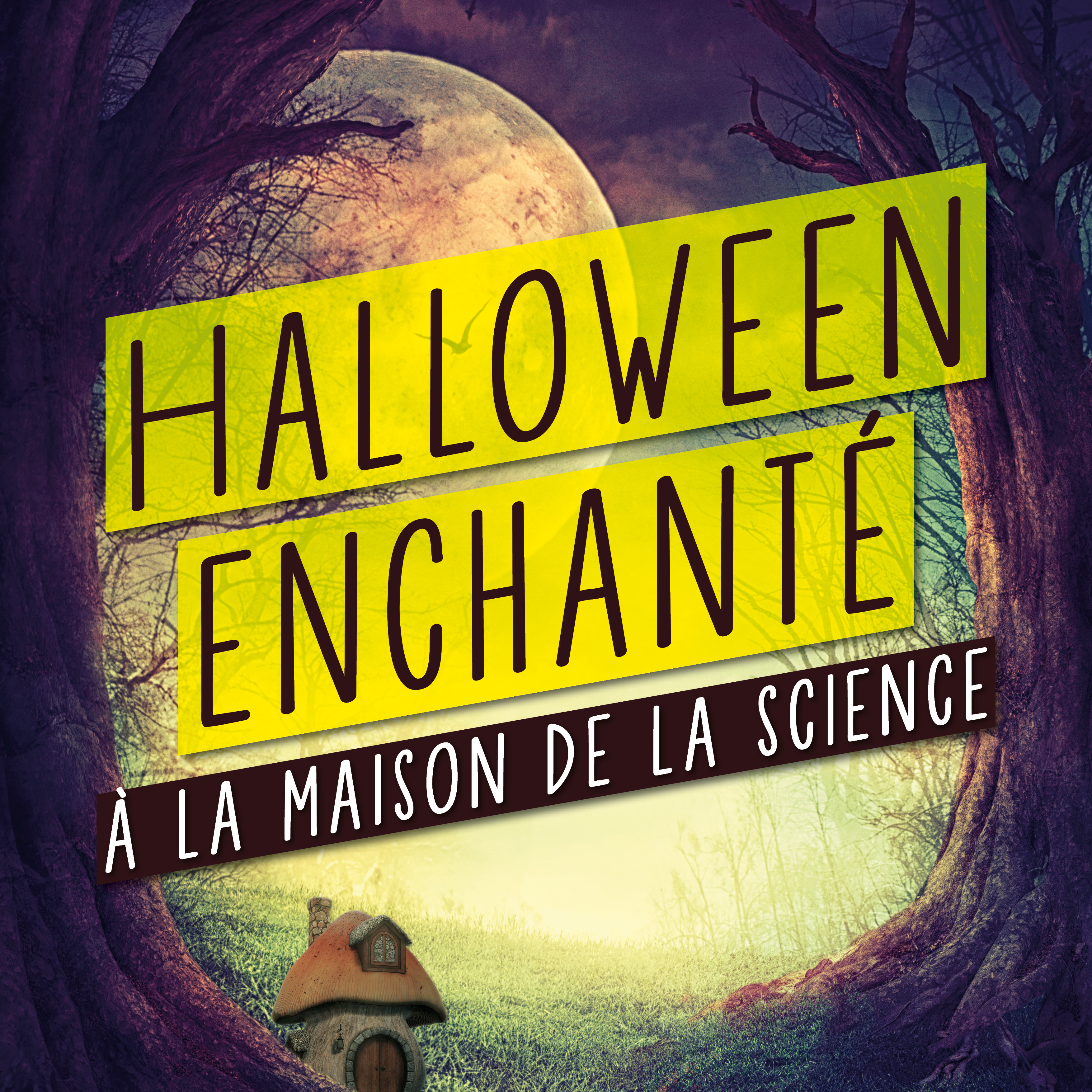 Halloween enchanté à la Maison de la Science